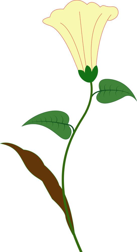 Flower Clipart Design