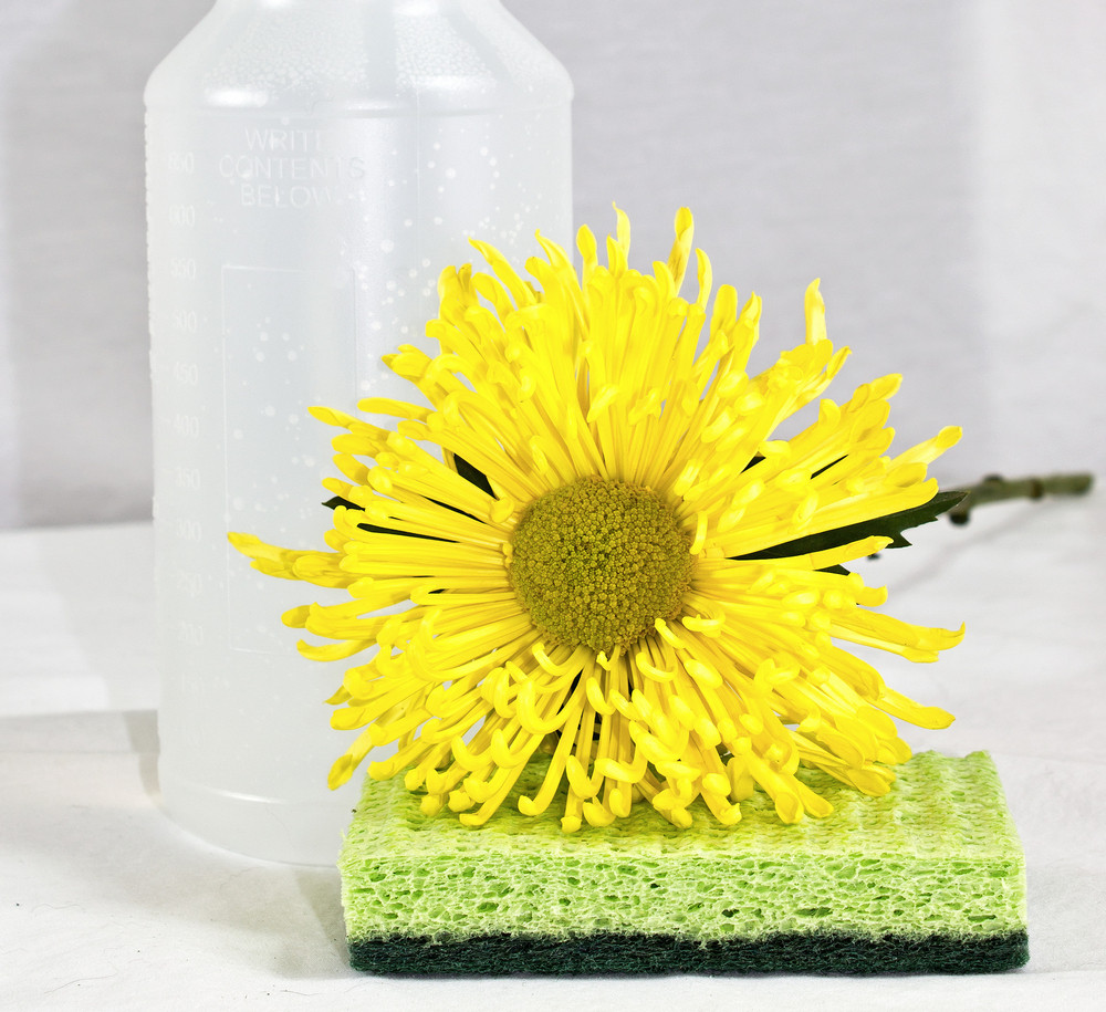 Flower Scrub With Bottle