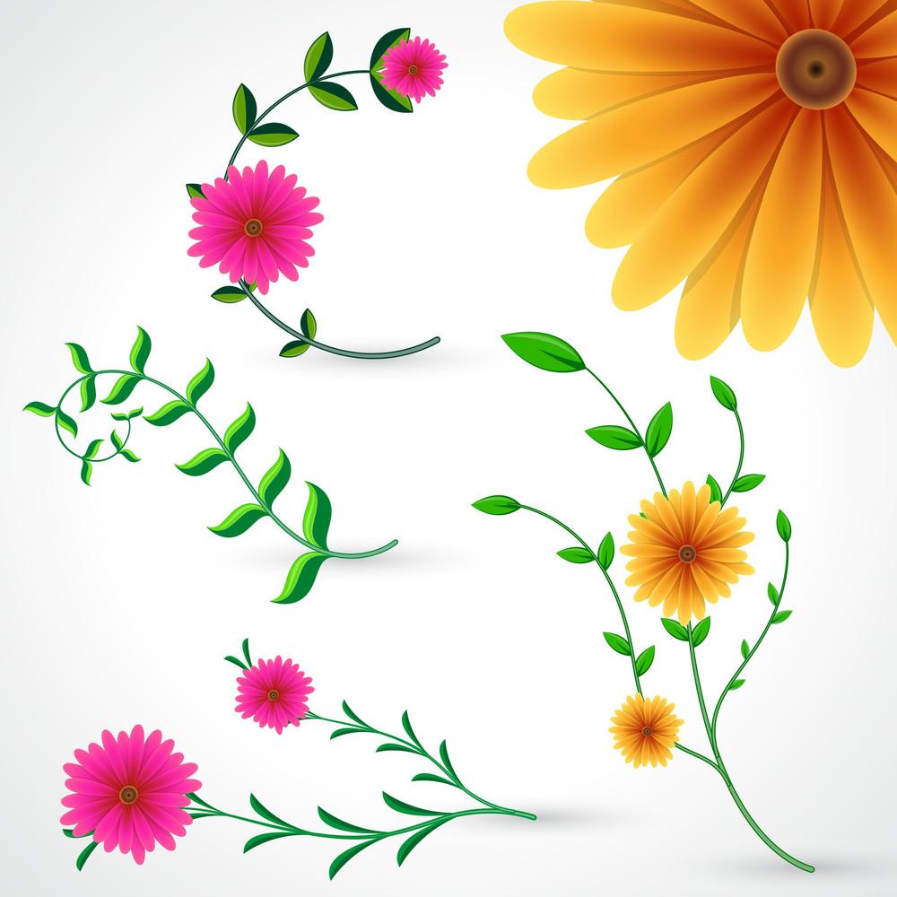 Flower Vector Pack