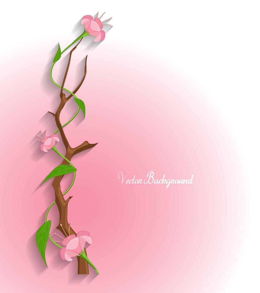 Flowers Branch Vector Banner