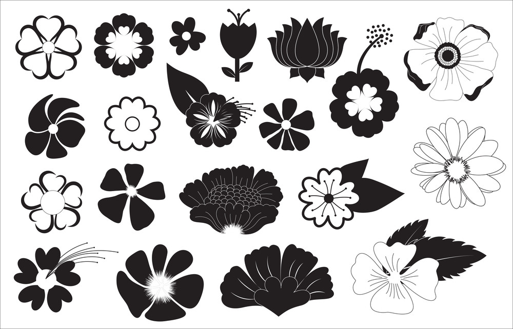 Flowers Shapes