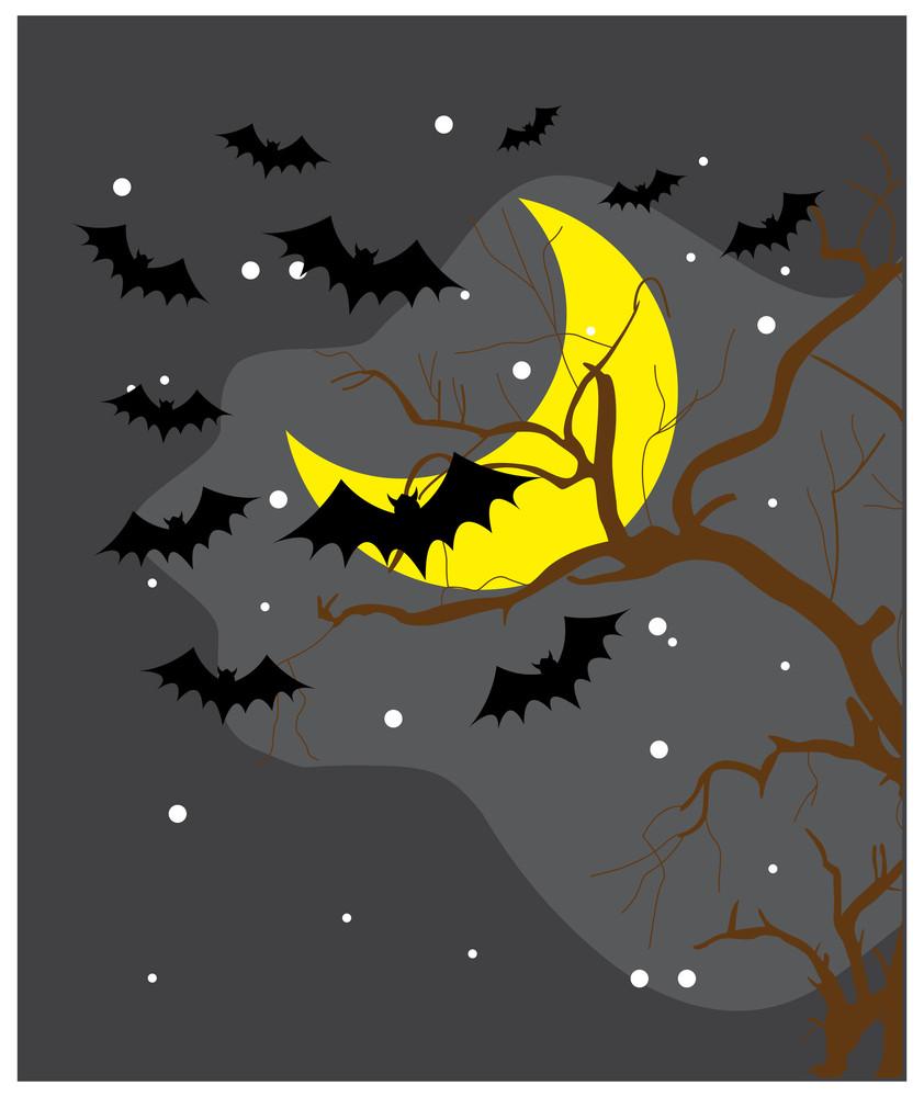 Flying Bats In Spooky Night