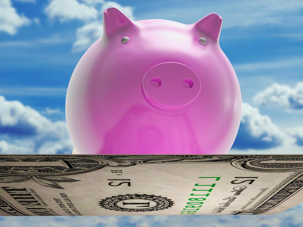 Flying Dollar Pig Shows High Flying Success