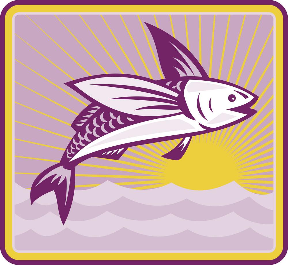 Flying Fish At Sea Ocean Square Retro