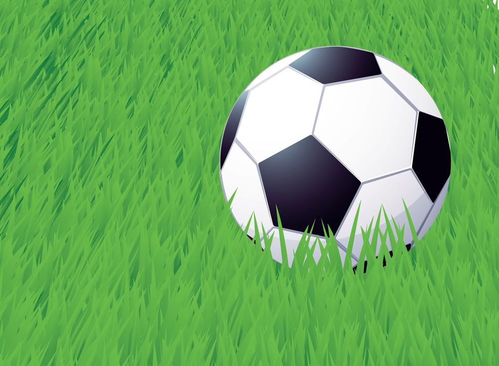Football. Vector.