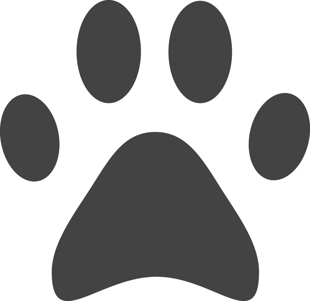 Footmark Glyph Icon