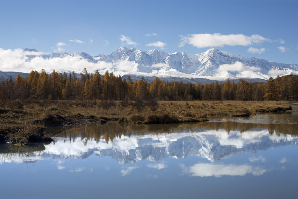 Forest and snowy mountains reflected in a still lake