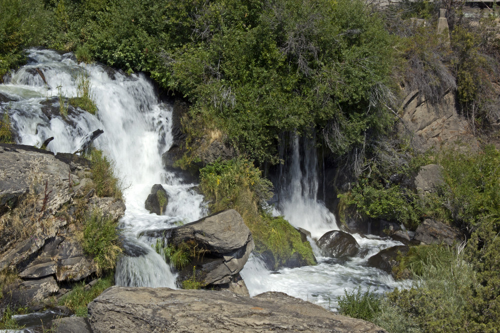 Forest Waterfall Background 274