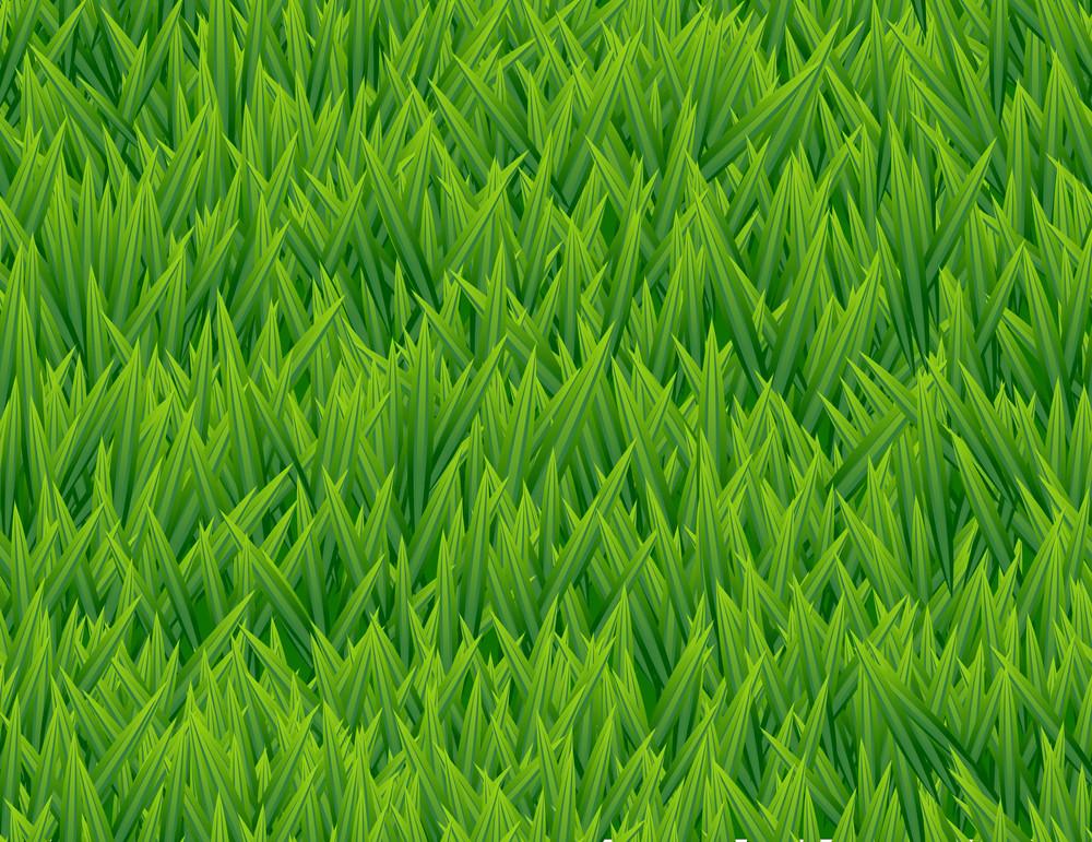 Fresh Grass Seamless Vector Pattern.