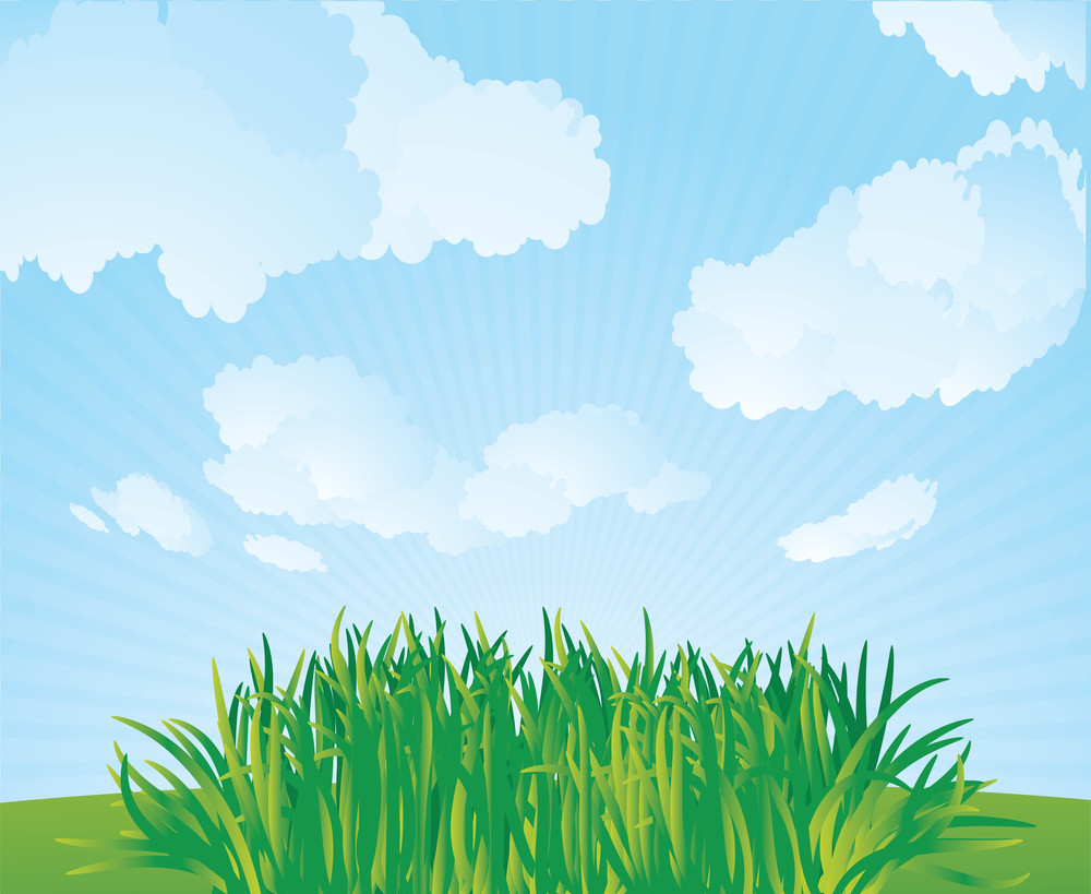 Fresh Grass. Vector Background.