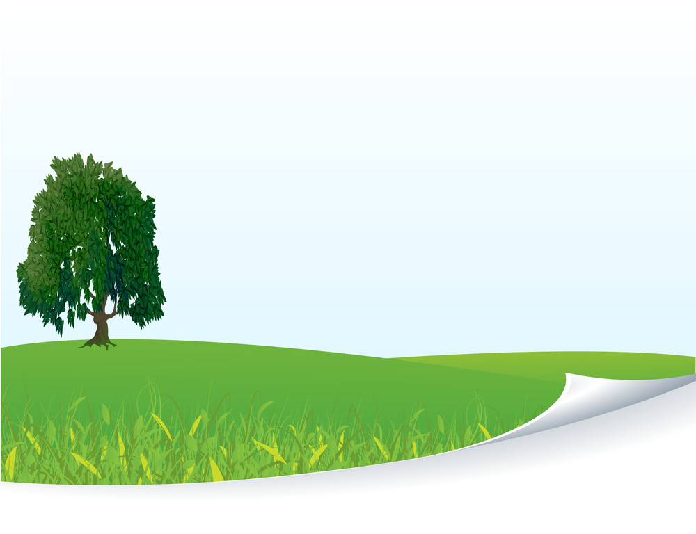 Fresh Green Meadow With Grass And Tree. Vector Template Background.