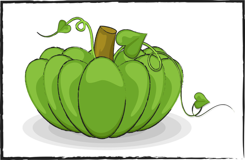 Fresh Green Pumpkin Drawing Art
