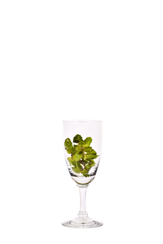 fresh Peppermint in wine glass, isolated on white background