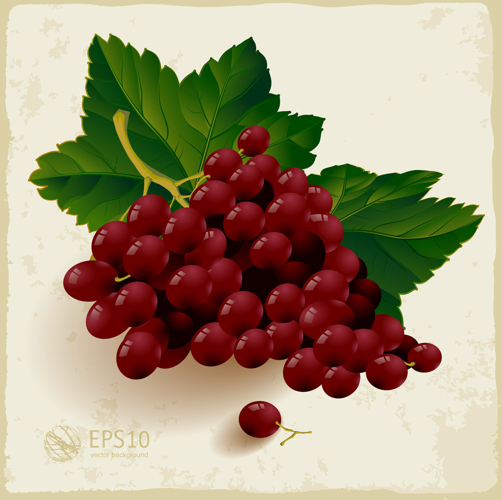 Fresh Red Grapes With Leaves.