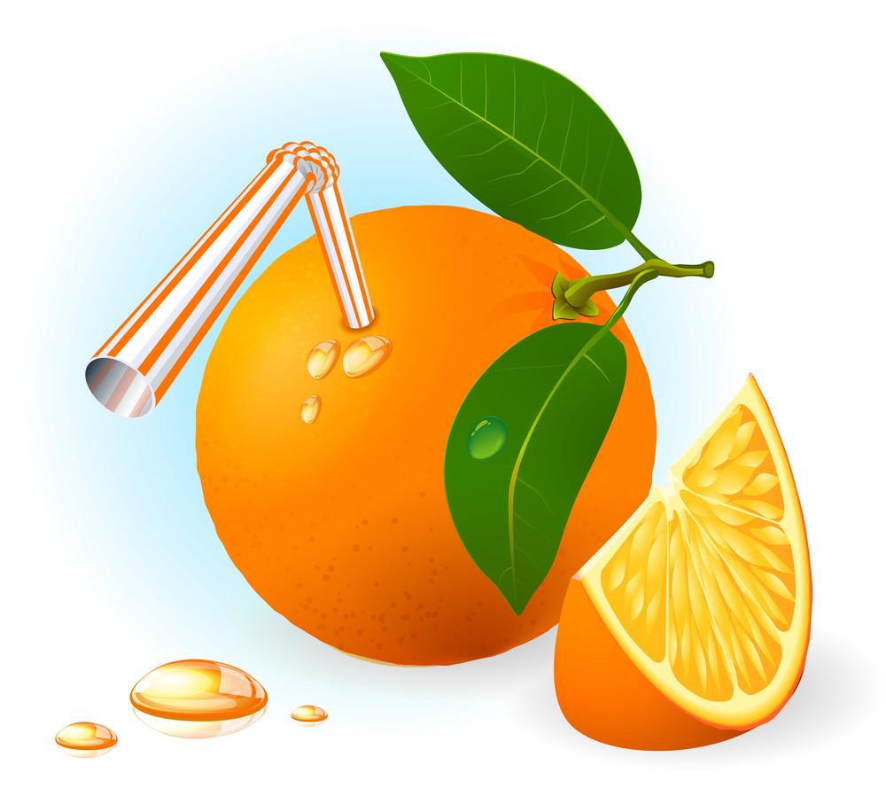 Fresh Ripe Orange Drink. Vector.