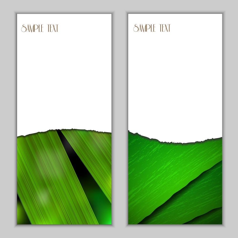 Fresh Vertical Seasonal Banners