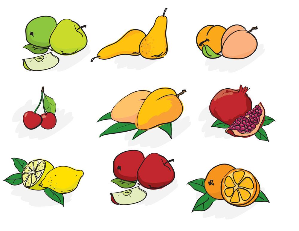 Fruits. Vector Sketch.