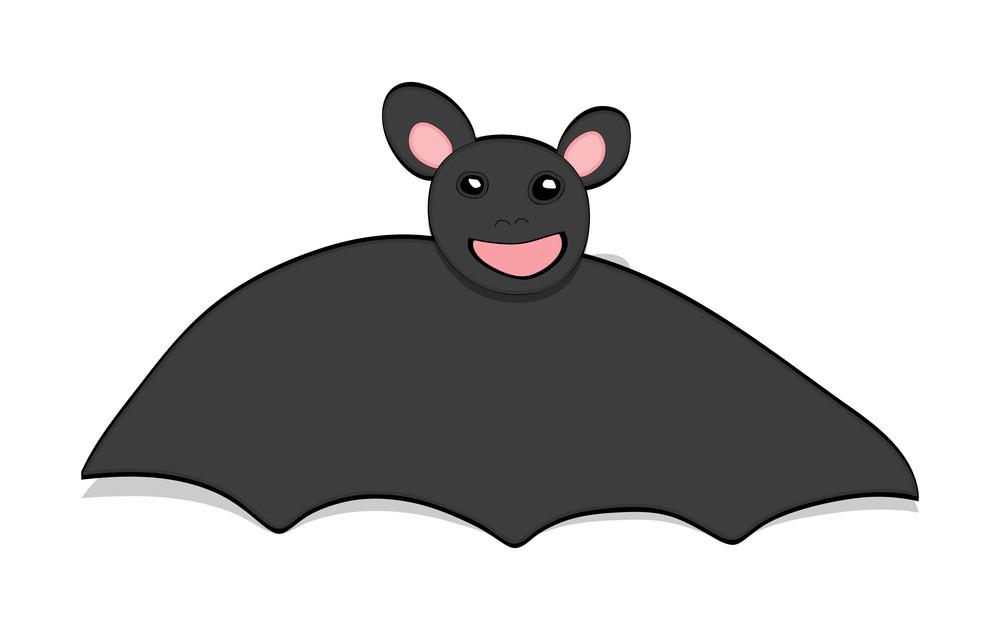 Funny Bat Toy