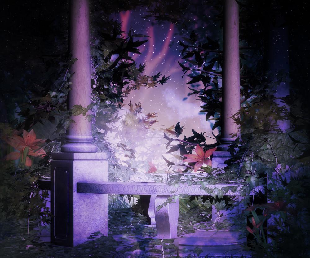 Garden At Night Background