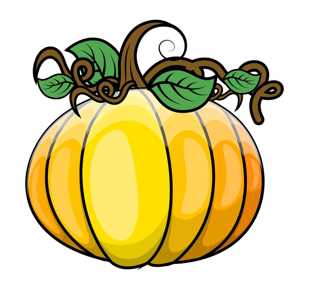 Glossy Fresh Pumpkin Vector Illustration