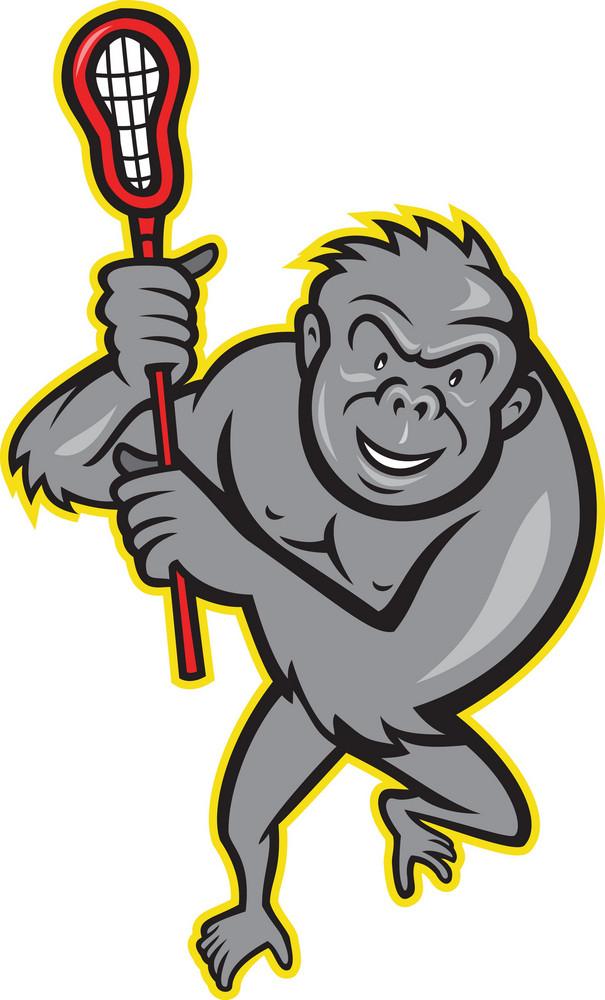 Gorilla Ape With Lacrosse Stick Cartoon