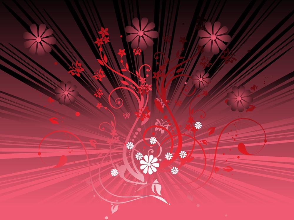 Gradient Red Floral And Sunburst Background
