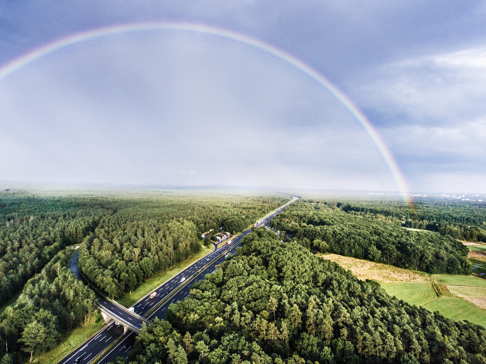 Aerial view of highway full of cars and trucks in the middle of green forest, colorful rainbow, city. Netherlands