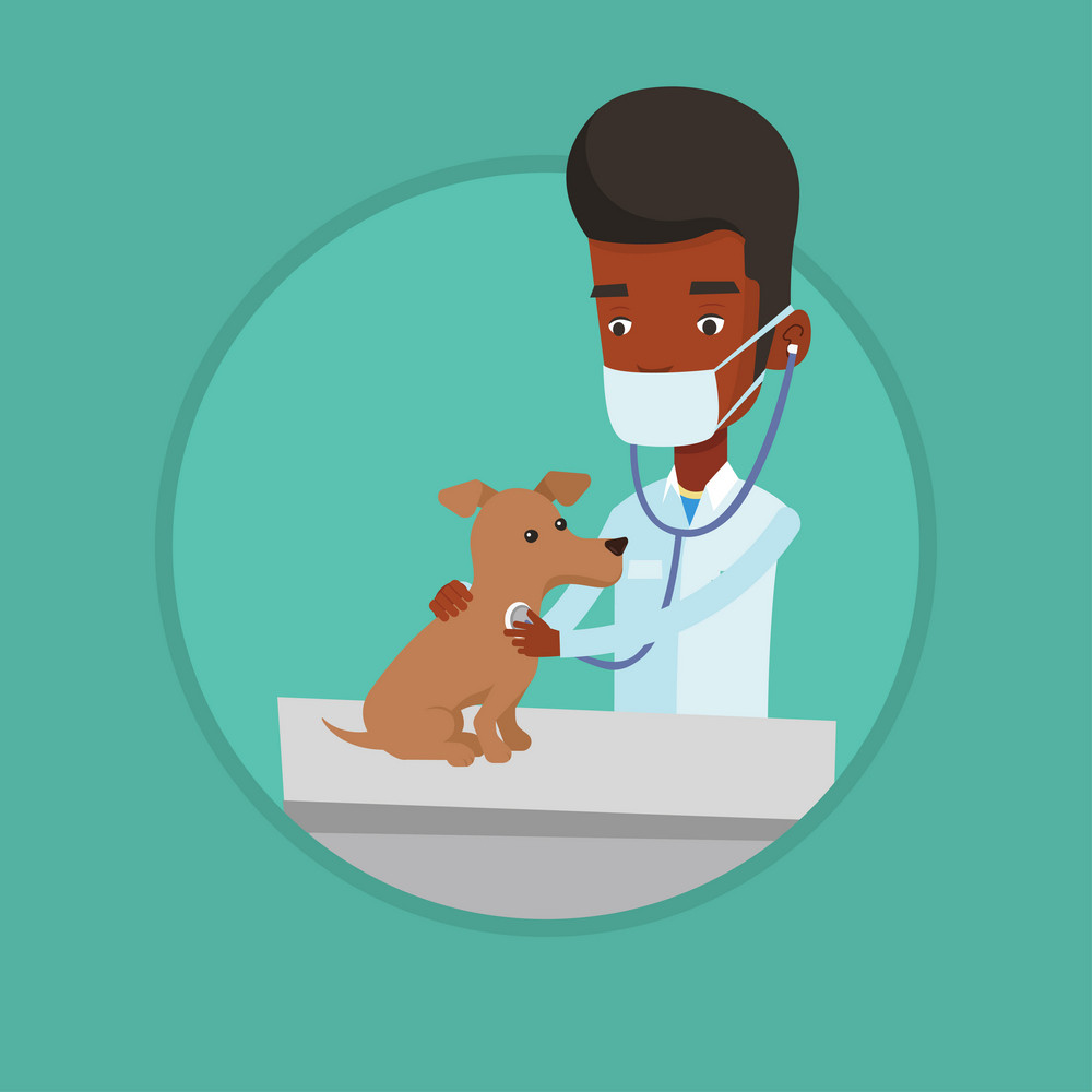 African-american veterinarian examining dog in hospital. Veterinarian checking heartbeat of dog with stethoscope. Pet care concept. Vector flat design illustration in the circle isolated on background