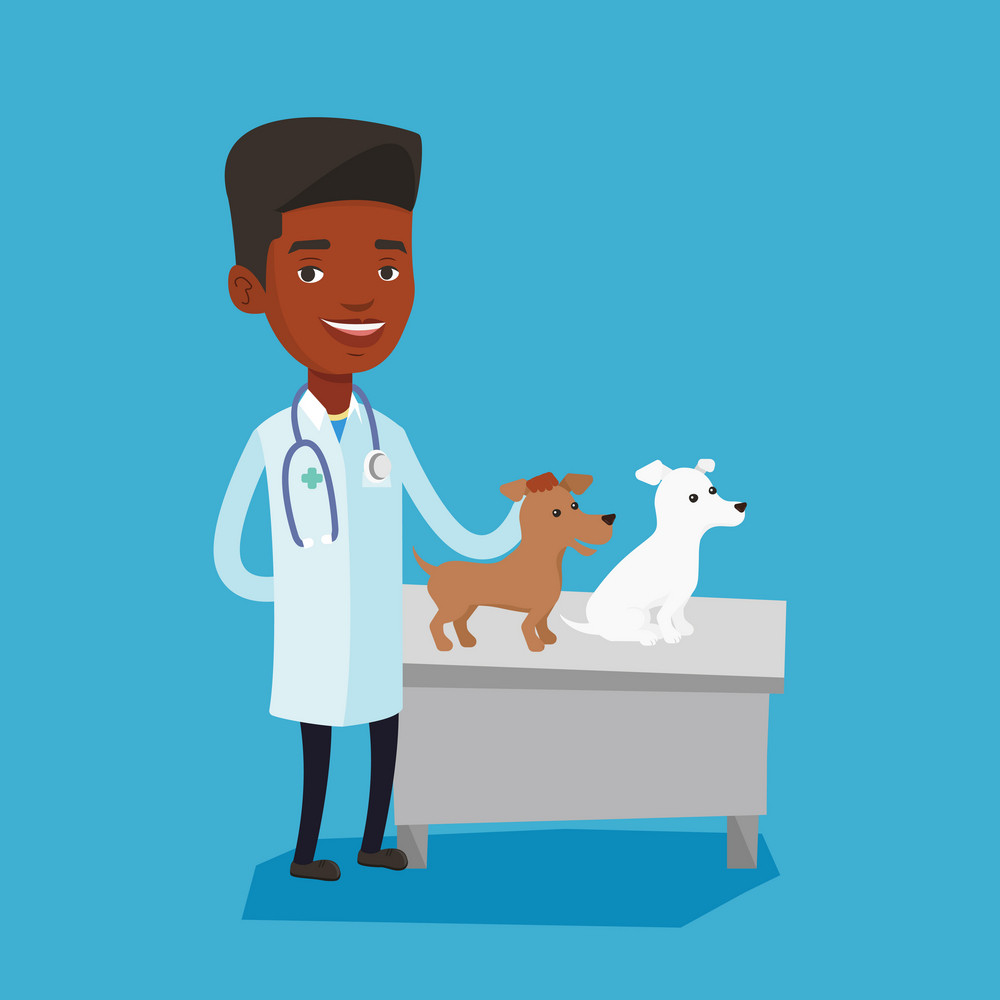 African-american veterinarian with stethoscope examining dogs in hospital. Male veterinarian with dogs at vet clinic. Concept of medicine and pet care. Vector flat design illustration. Square layout.