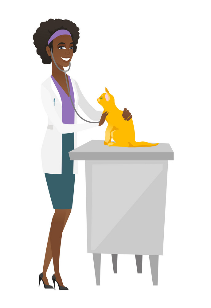 African veterinarian examining cat in hospital. Veterinarian checking heartbeat of a cat with stethoscope. Medicine and pet care concept. Vector flat design illustration isolated on white background.