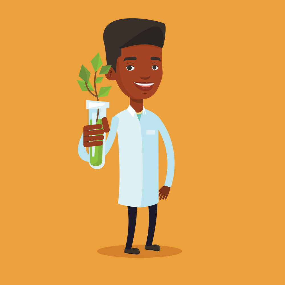 An african-american scientist holding test tube with young sprout. Man analyzing sprout in test tube. Laboratory assistant showing test tube with sprout. Vector flat design illustration. Square layout