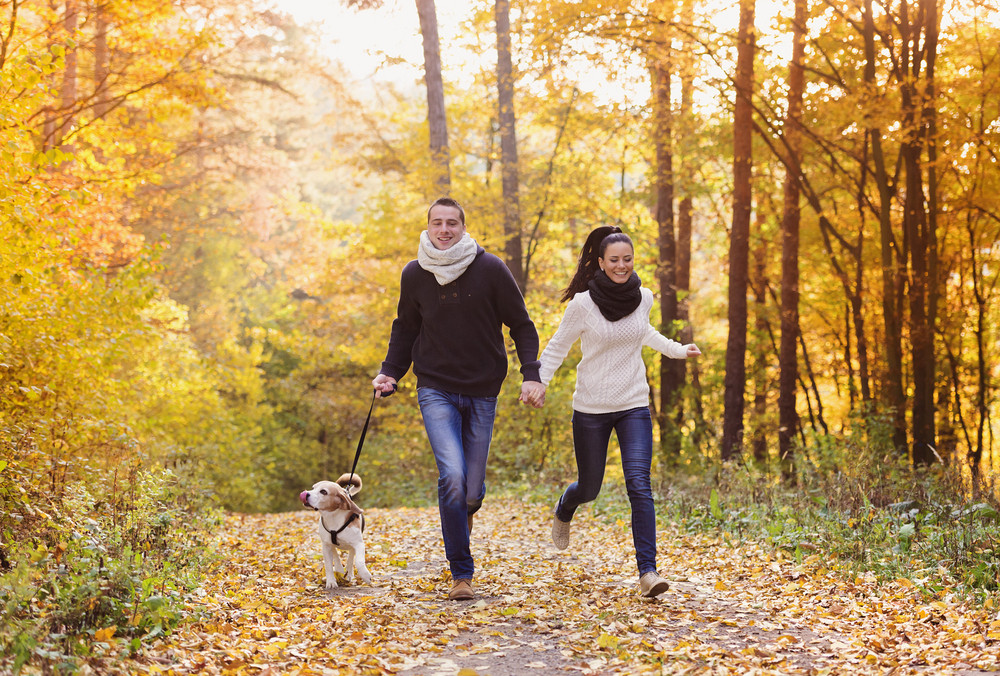 Beautiful young couple with dog in autumn forest