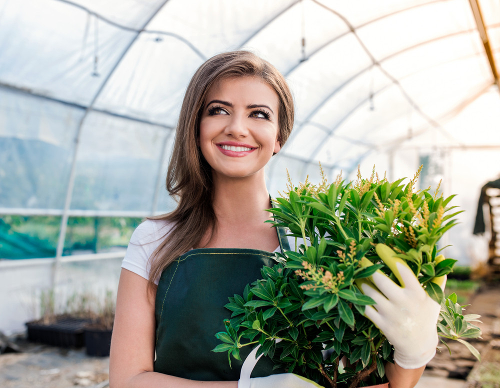 Beautiful young woman gardening with seedlings in greenhouse