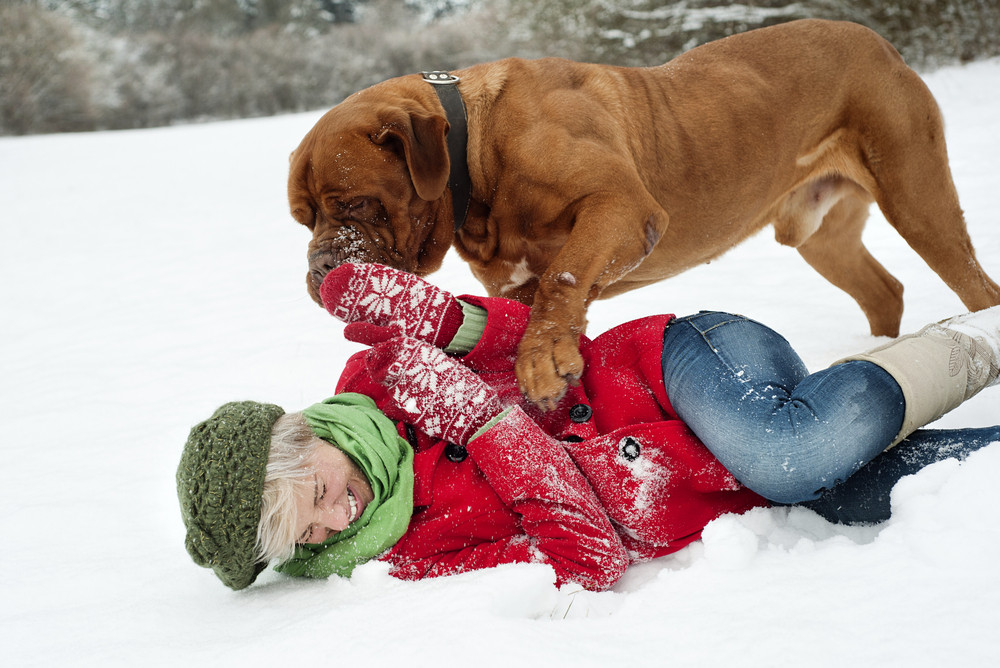 Blonde girl is having fun with her big brown dog in snow