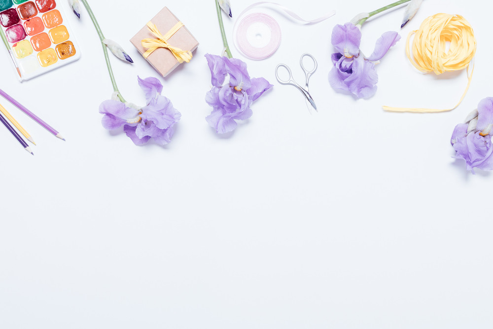 Blue flowers, watercolor paints, boxes with gift and ribbons on white background, top view