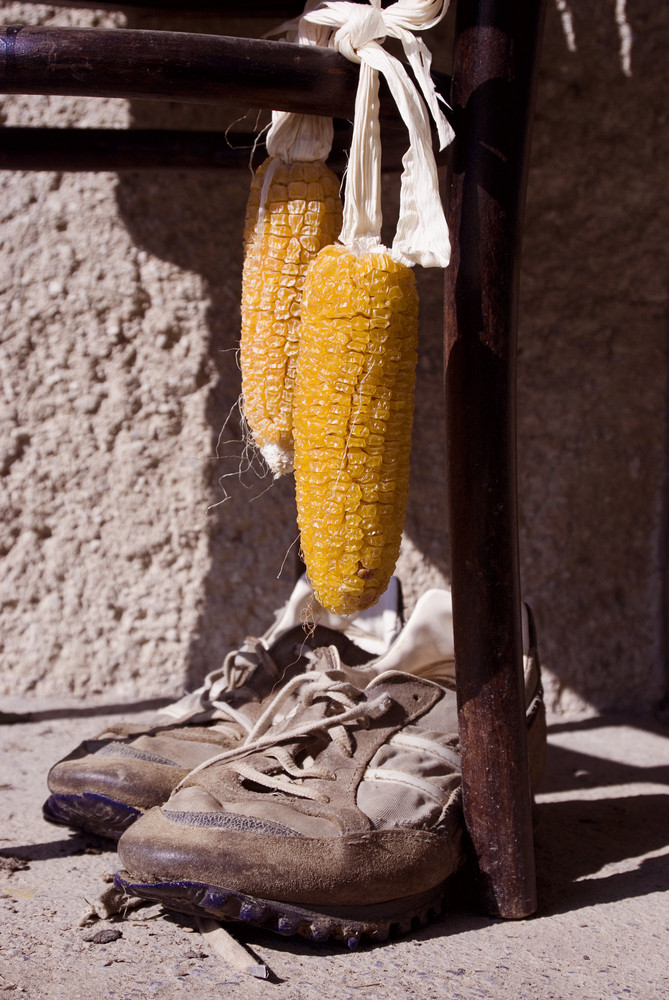 Close-up of dried yellow corn hanging on chair outside