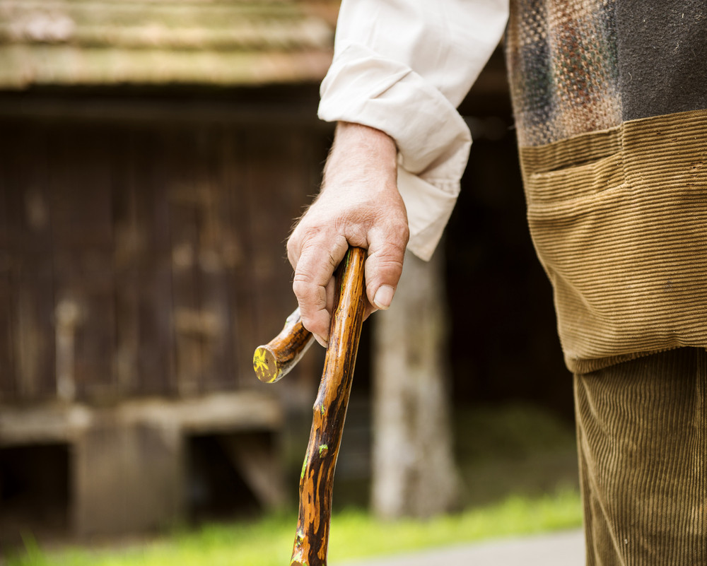 Close-up of old farmer with stick walking in his back yard