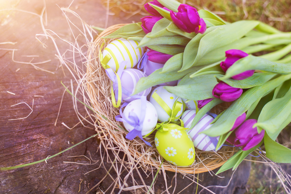 Colorful Easter Eggs And Beautiful Spring Flowers Laid On A Floor