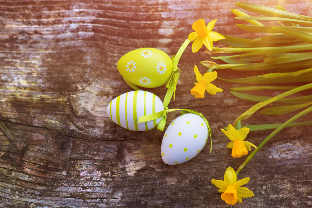 Colorful easter eggs and beautiful spring flowers laid on a wooden floor background.