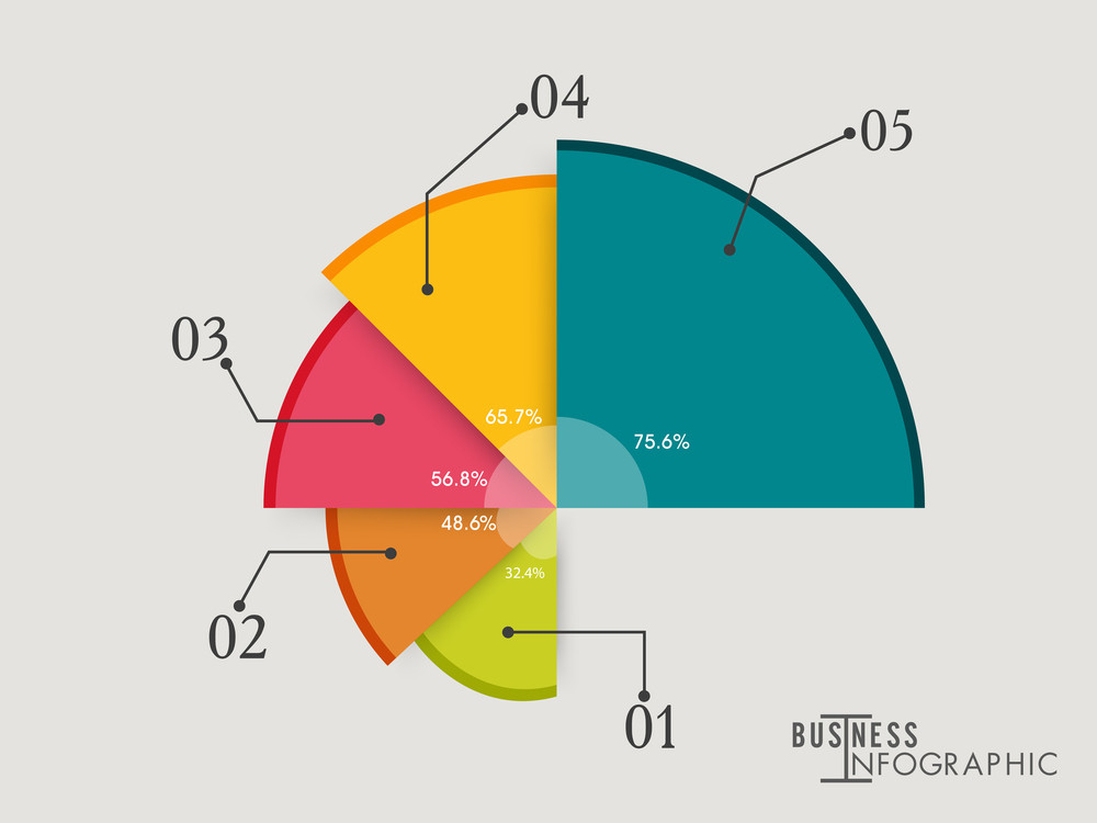 Creative Colorful Pie Chart Infographic With Statistics For Your