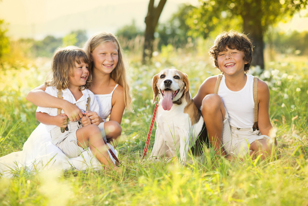 Cute kids spending time outside with their dog
