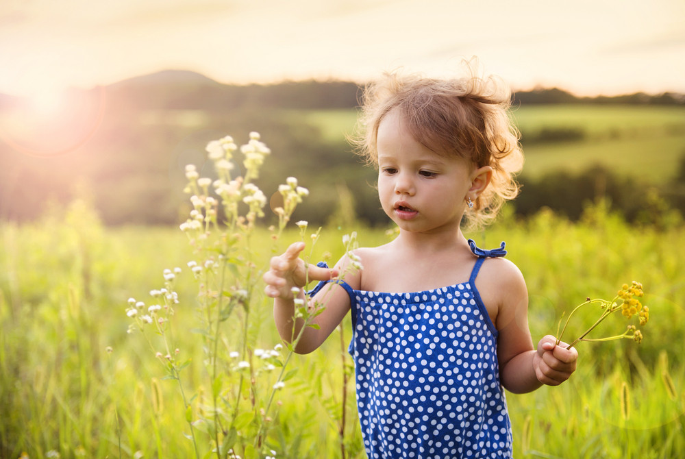 Cute little girl is playing in summer meadow