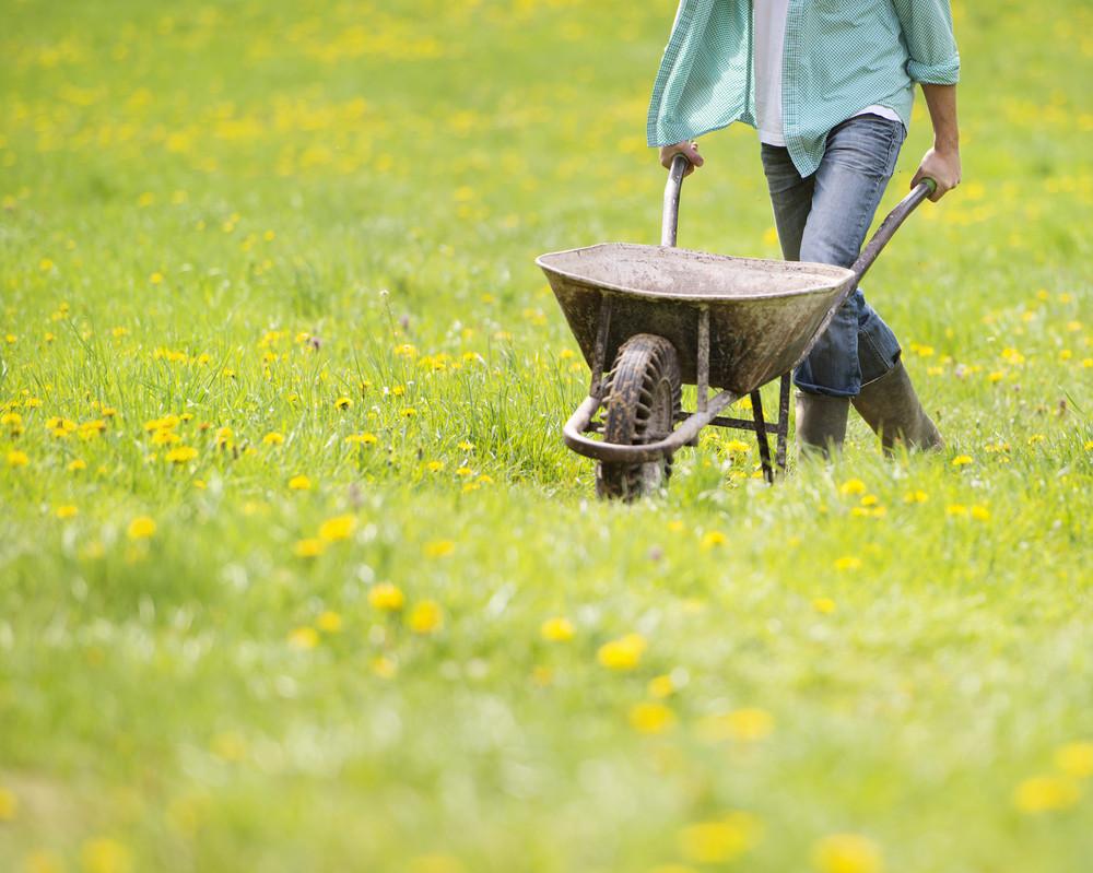 Detail of young male farmer pushing wheelbarrow in the field