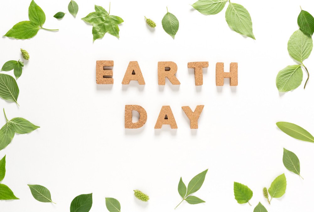 Earth Day text with green leaves top view flat lay