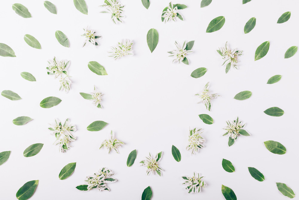 Green flowers and leaves with a round frame for text in the middle on a white table
