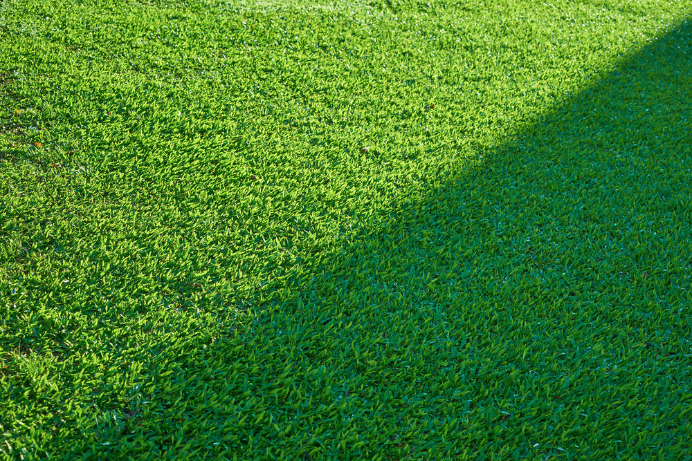 Green grass texture from a field with half shadow