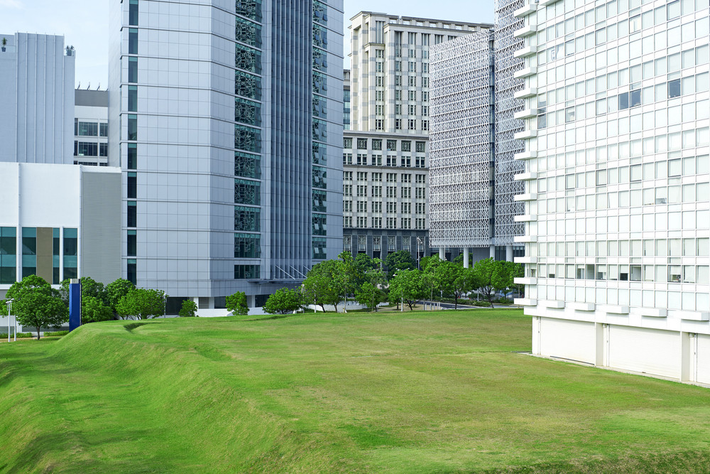 Green park in front of modern office exterior