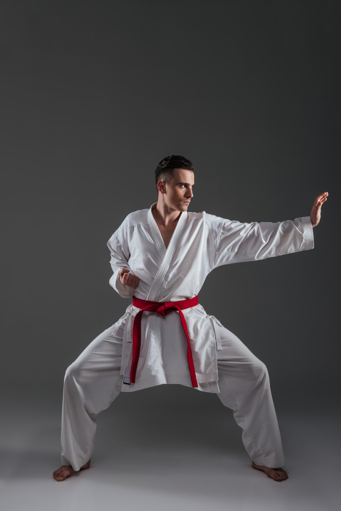 Handsome sportsman dressed in kimono practice in karate isolated over grey background. Looking aside.