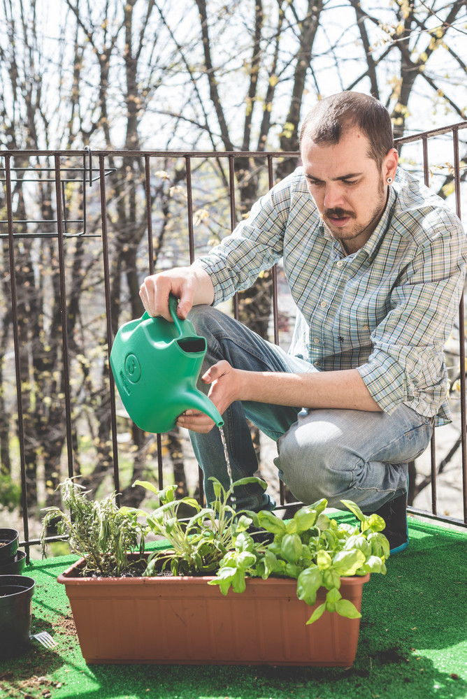 handsome stylish man gardening and watering at home