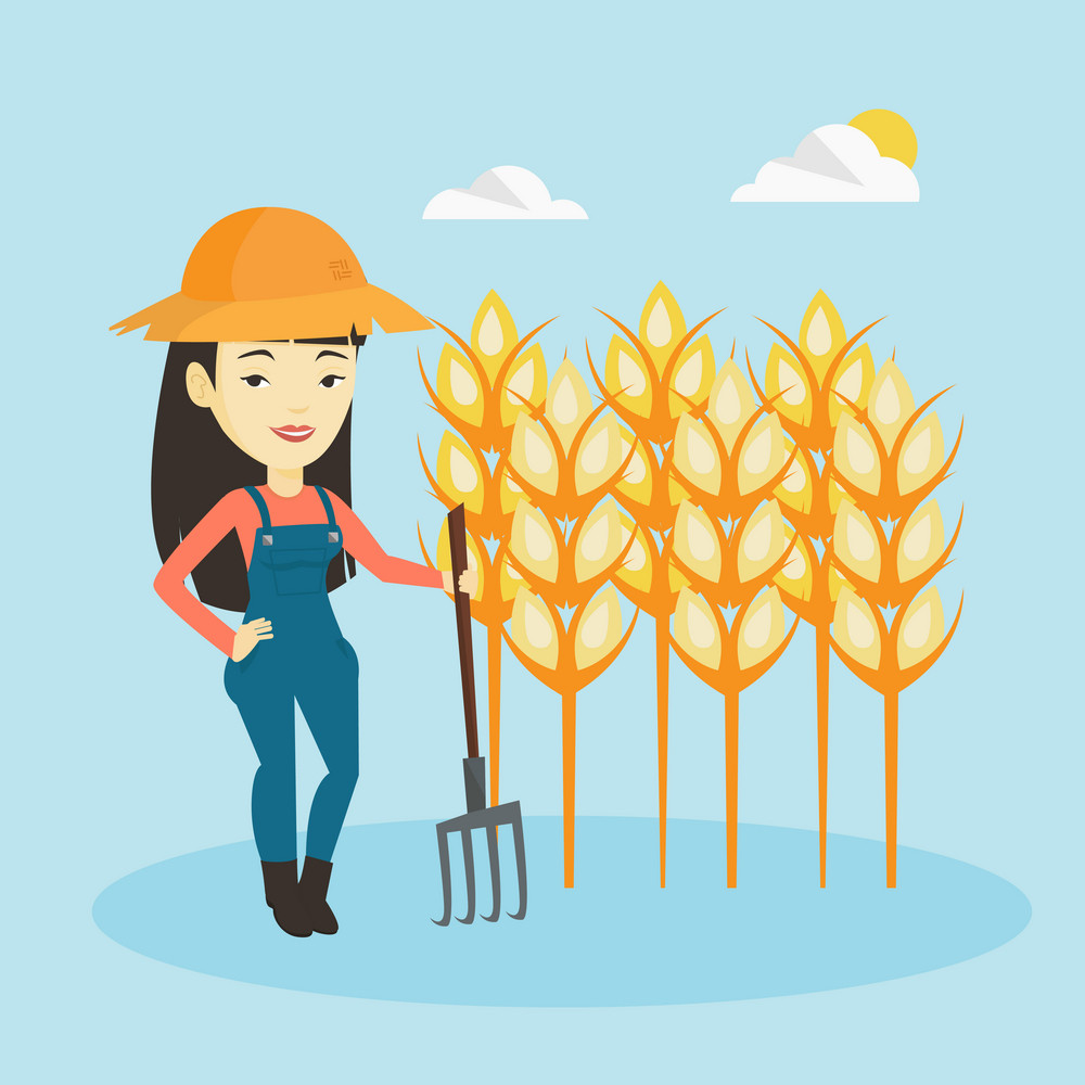 Happy asian farmer in summer hat standing with a pitchfork on the background of wheat field. Female farmer working with pitchfork in wheat field. Vector flat design illustration. Square layout.